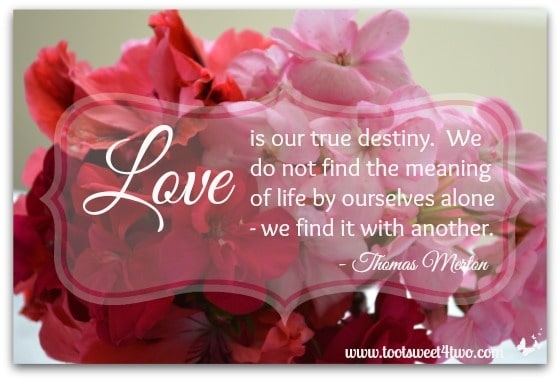 Love Is Our True Destiny Toot Sweet 4 Two