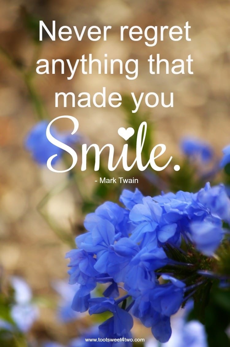 smile quote by mark twain toot sweet two